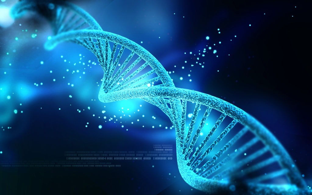 immagine del dna per articolo sul batterio con genoma compresso