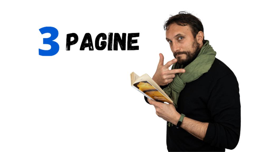 3 Pagine
